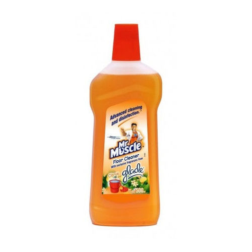 Mr Muscle Floor Cleaner - Citrus (Bottle)